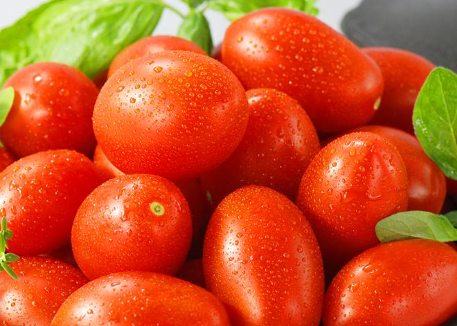 HASEGAWA-no hasegawa-no ハセガワーノ ほっとま 加熱調理用トマト 長谷川農園