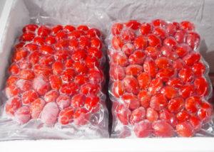冷凍 ほっとま 加熱用 トマト